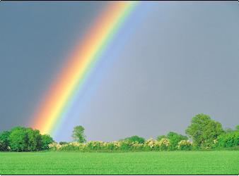 картинки радуга явление природы